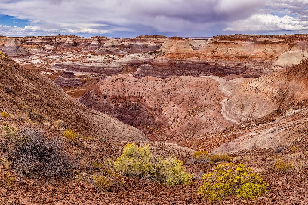 JeffF-Petrified Forest Blue Mesa