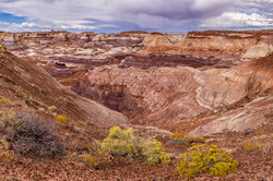 JeffF-Petrified Forest Blue Mesa