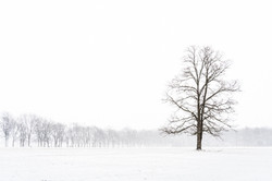 JimS First Snow