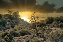 GrahamJ-Cahuilla Tewanet sunset
