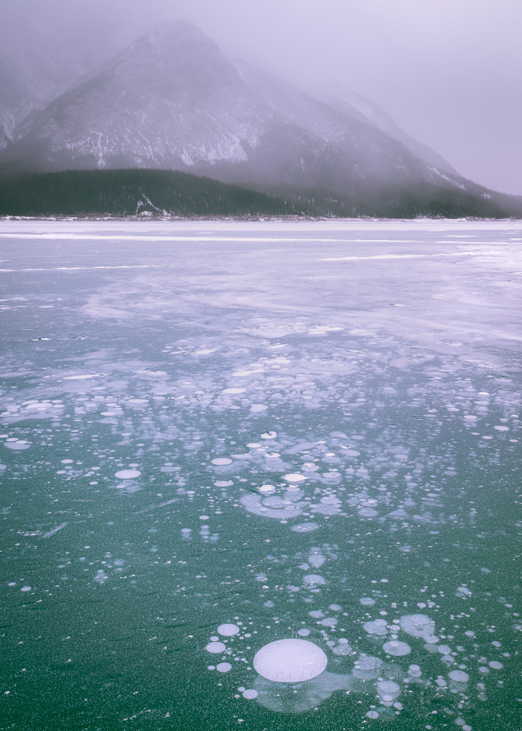 NeilM Abraham Lake