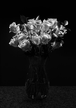 JeffF-2-Roses