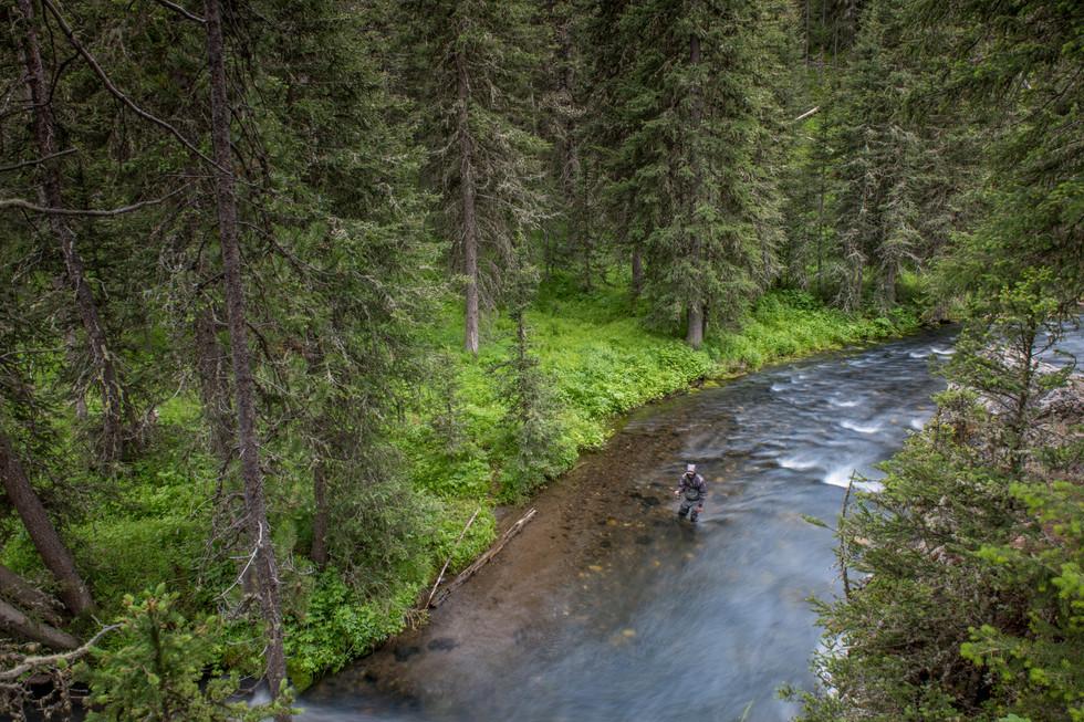 Montana18_139.JPG