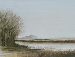 Willem Wolthuis ~ Drentsche A
