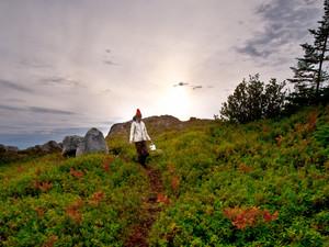 FEAST YOUR WAY THROUGH BERRY SEASON ON FOGO ISLAND