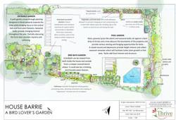 BARRIE DESIGN sketch plan