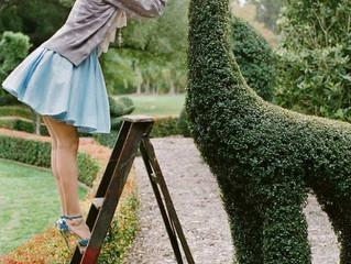 Garden PLAY!