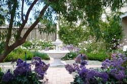 darling garden