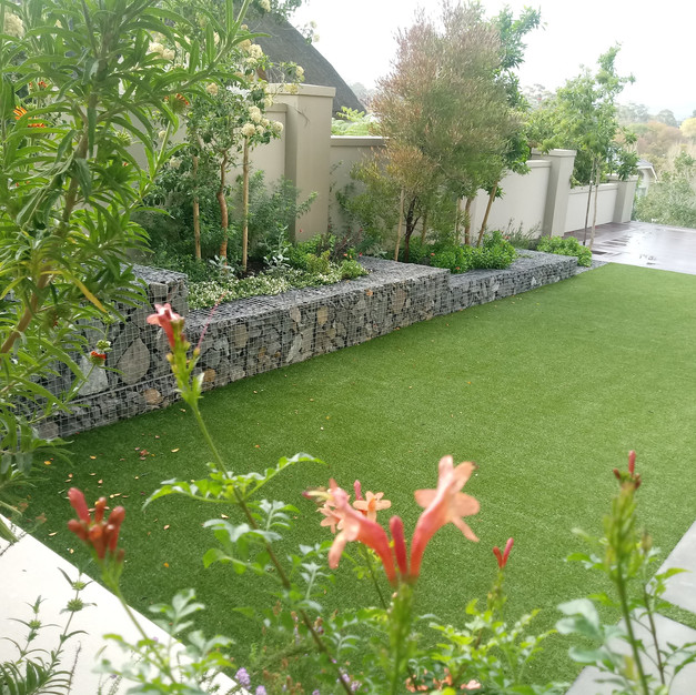 A Spec House Garden