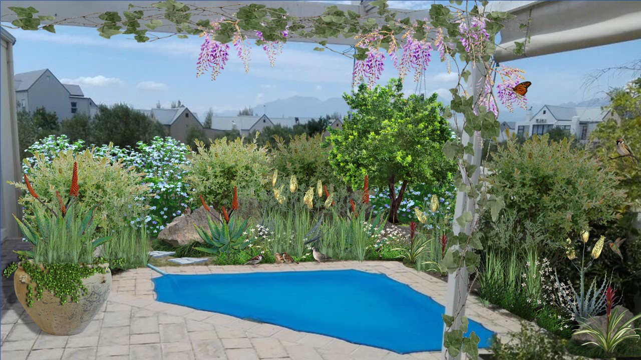barrie pool1