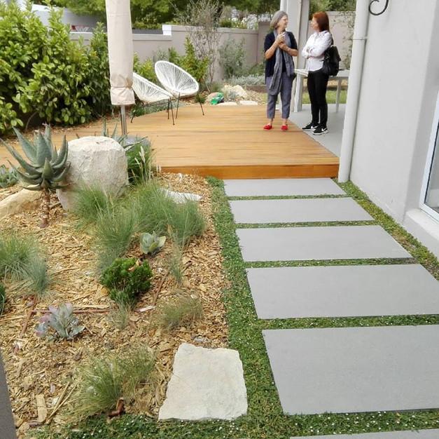 Modern-Look Garden