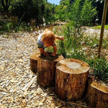 A Children's Garden
