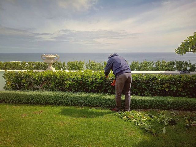 Private gardener training today...