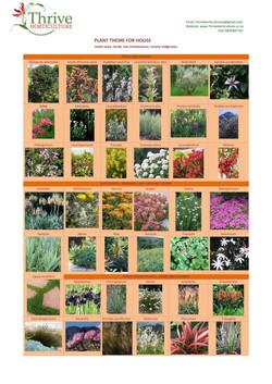 O  Carroll Plant Theme-page-001