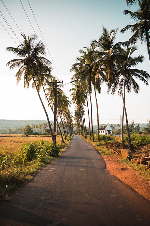 The Road to Anjuna