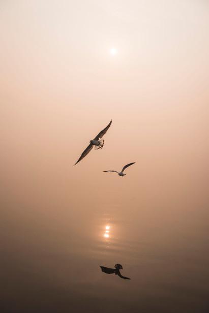 SRG_Varanasi-288.jpg