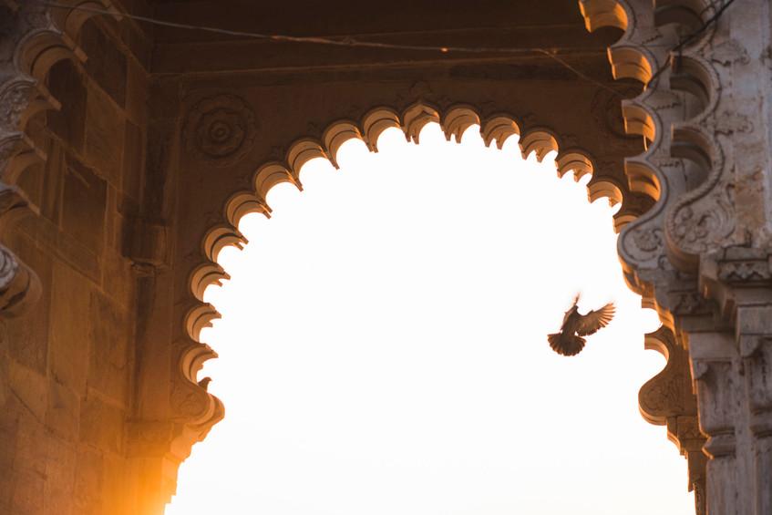 SRG_Udaipur-76.jpg