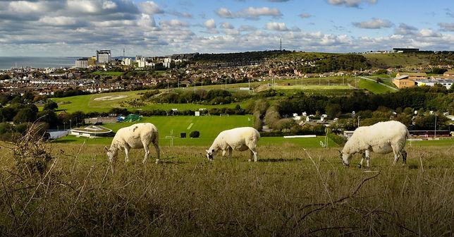 Brighton-Hiking-skyline.jpg
