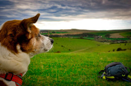 Yoga and Hiking southdowns near brighton