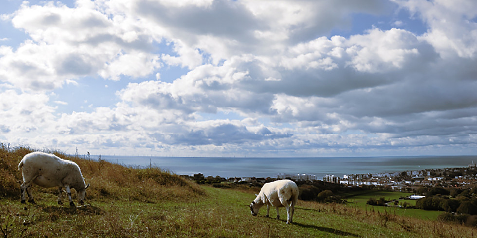 April - Brighton Panorama Walk