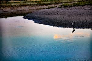 Hiking and Yoga walk along the river Adur