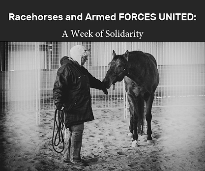 Racehorses and Armed Forces 4.PNG