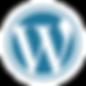 Advanced Wordpress Website Design Company