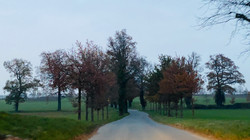 201126_route_peinture_1