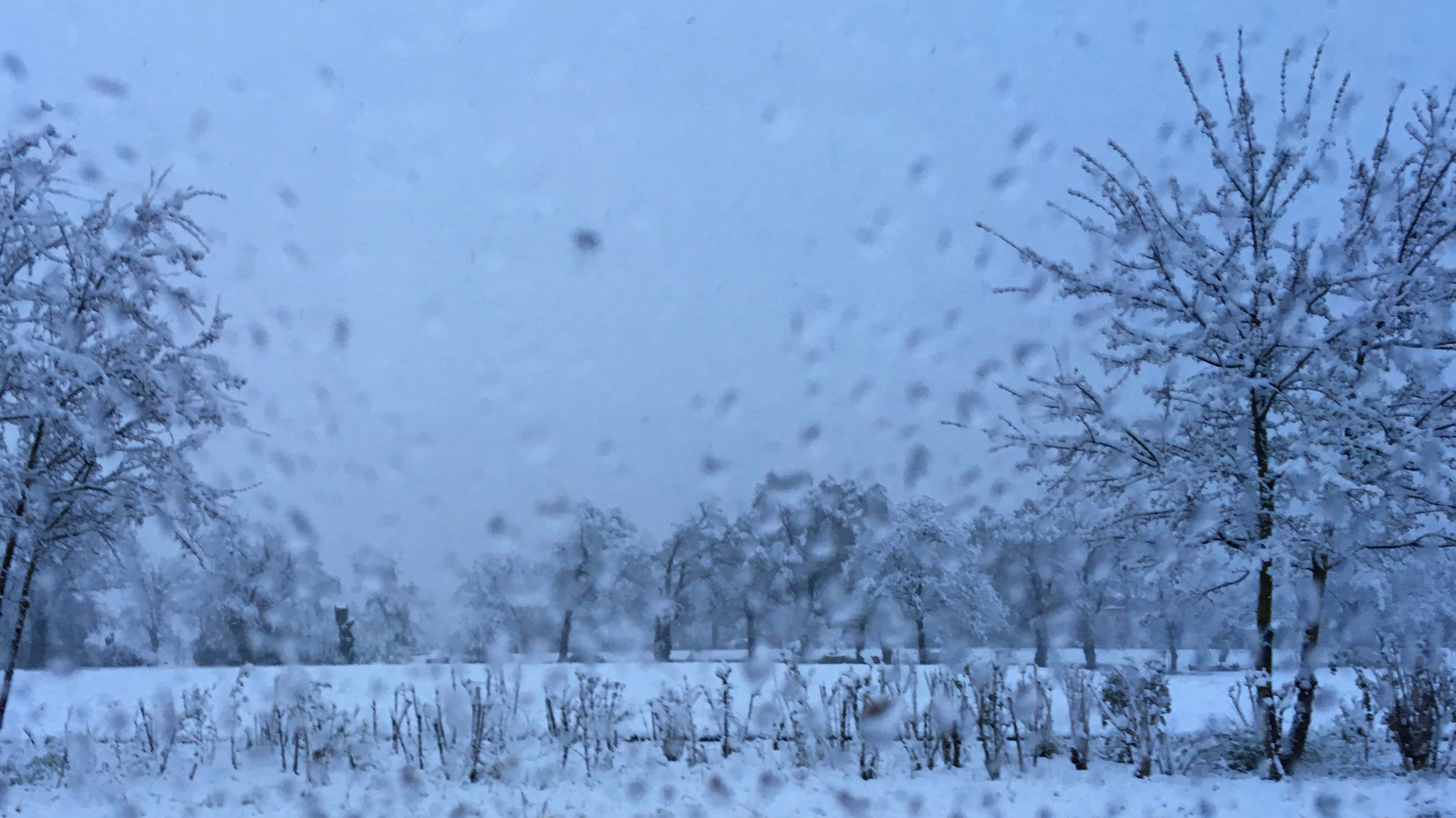 190404_voiture_neige_2