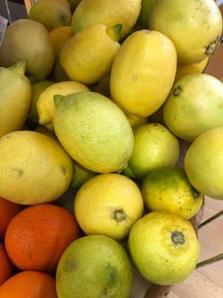 balafon_citrons