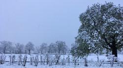190404_voiture_neige_3