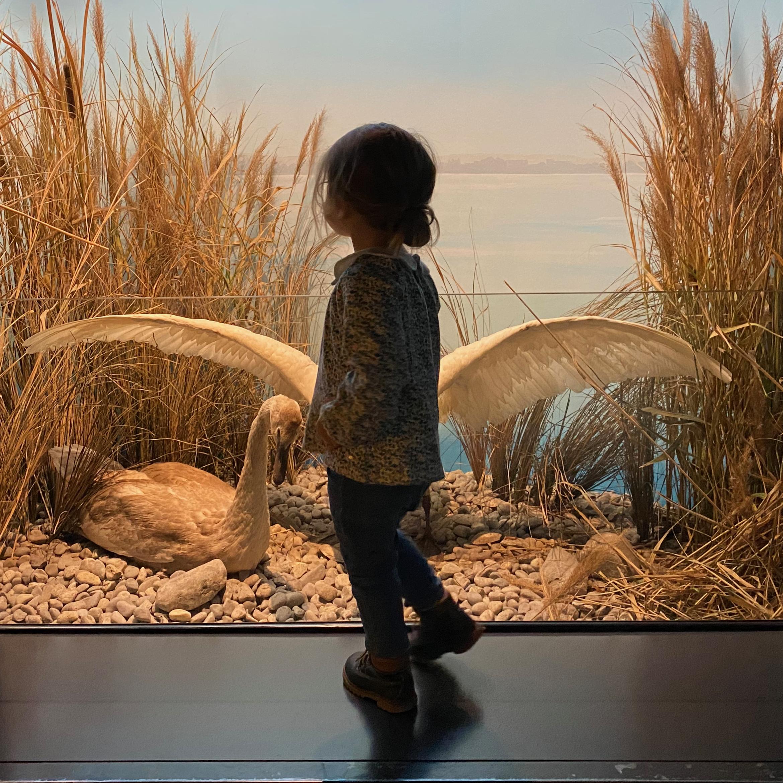 201202_museum