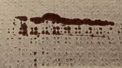 1810_huile_nappe_4
