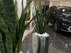 Lexus & Deco Sens : Omotenashi,  le sen de l'hospitalité à la japonaise.