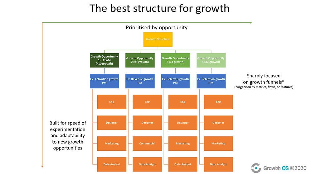 Organigram showing example of best growth structure, builf for speed of experimentation and adaptability to new growth opportunities and prioritised by opportunity