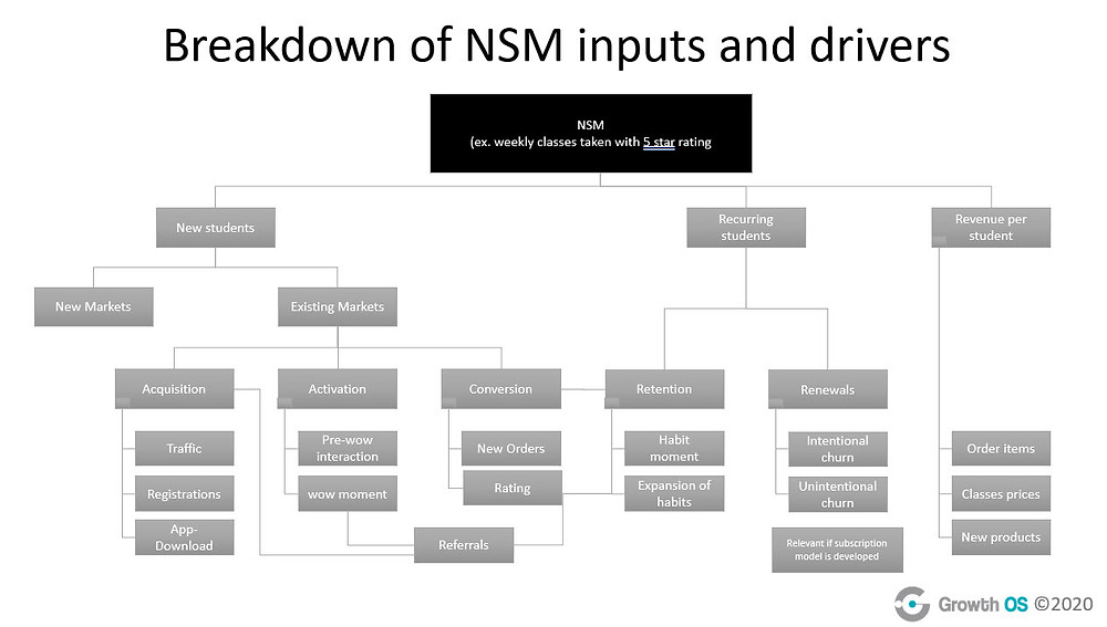 Chart showing a detailed breakdown of all North Star Metric inputs and drivers