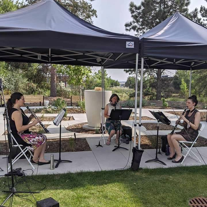 Sound Affects Socially Distanced Concert