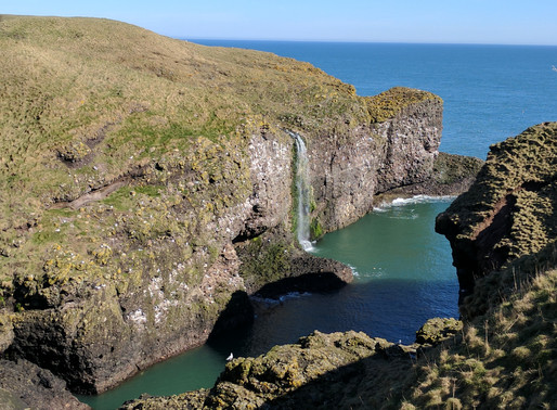 Welcome to Our Backyard – The Mearns Coast