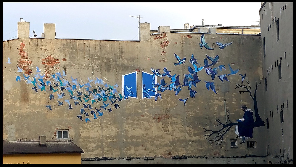 Polish Large Street Art - Birds Via Windows