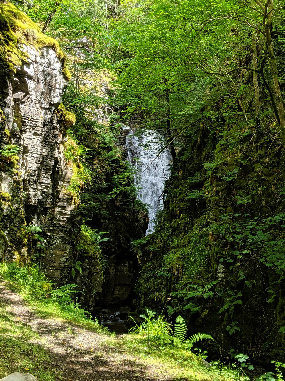 Lael Forrest Garden, Ullapool, Scotland