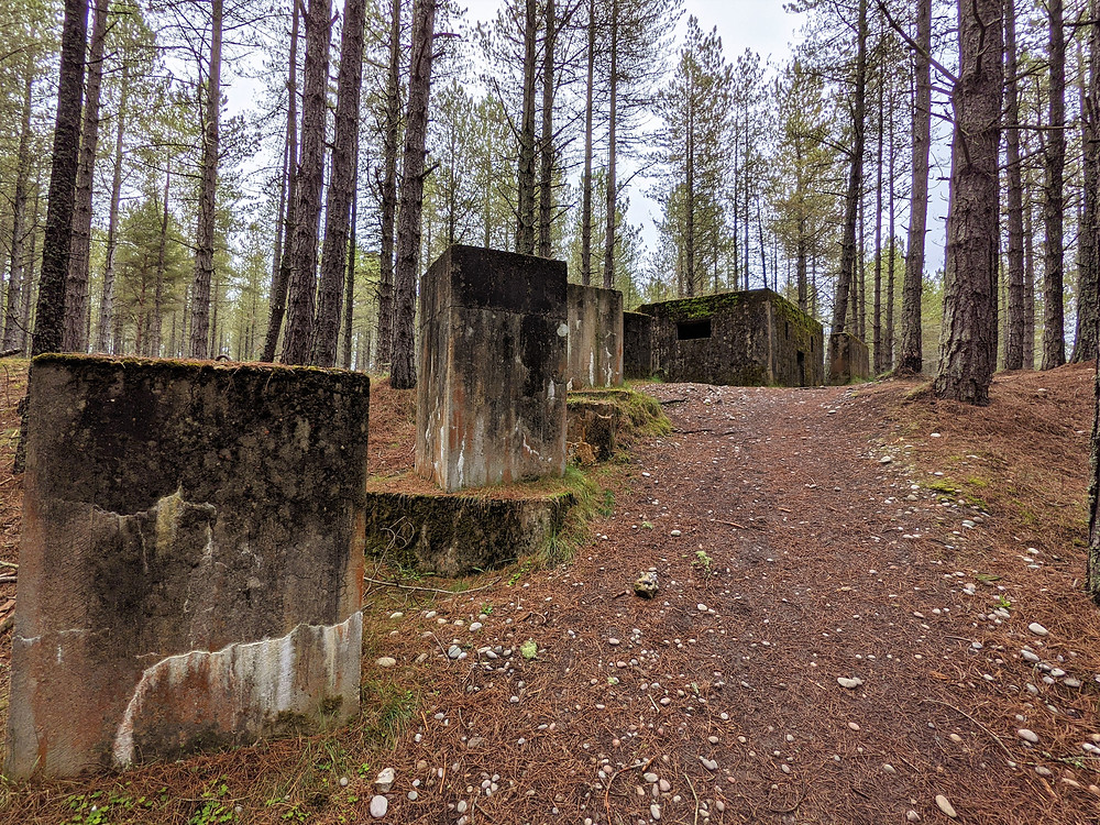 Tank traps at Lossie Forest