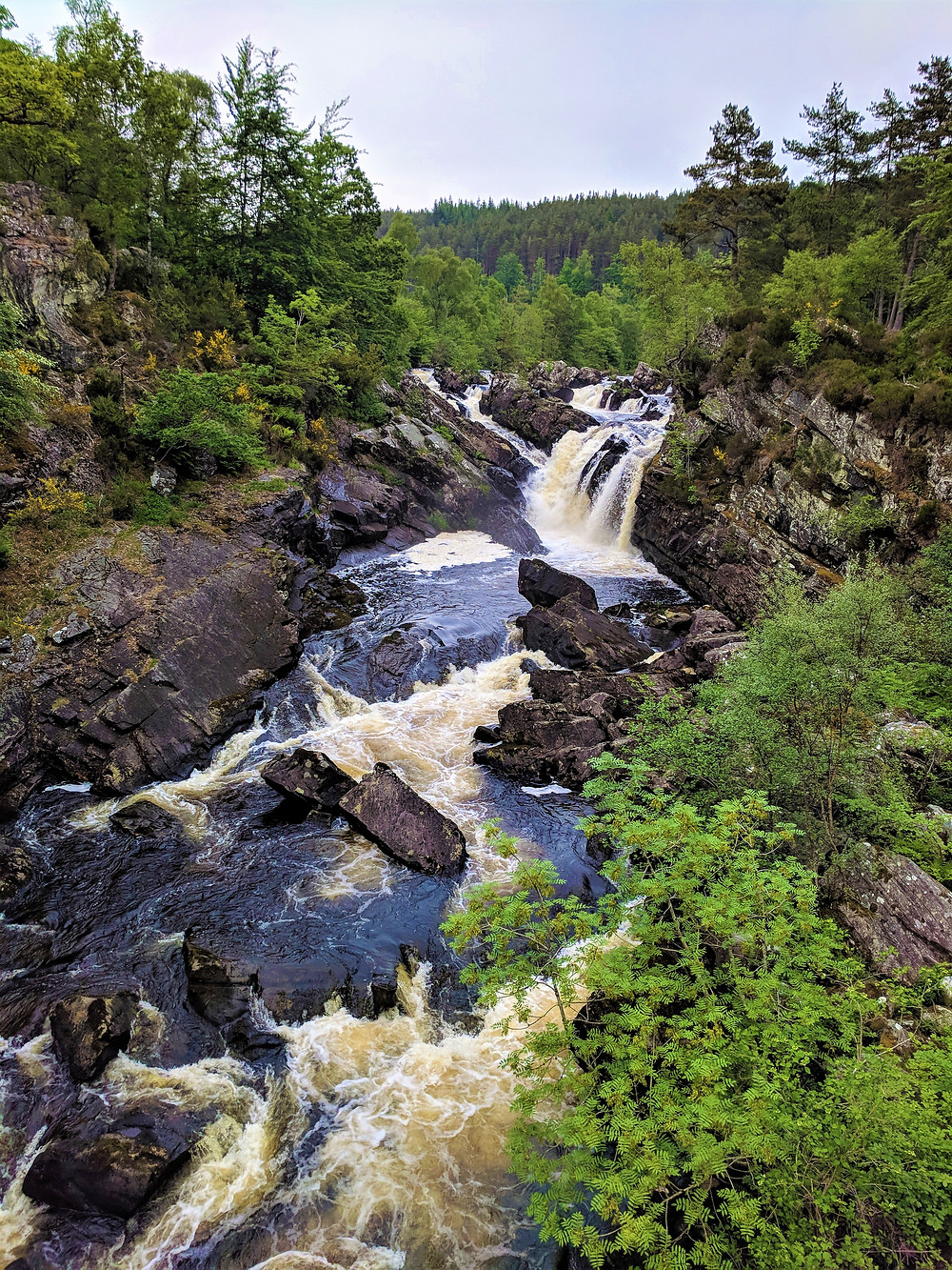 Rogie Falls, near Contin, Scotland