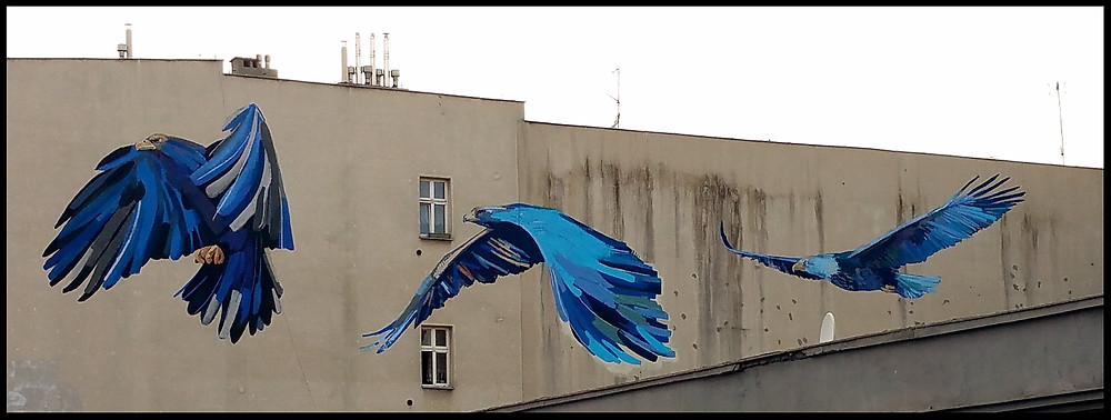Polish Large Street Art - Birds in Flight