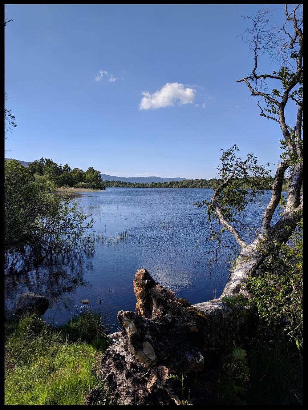 Loch Kinnord, Royal Deeside, Scotland.