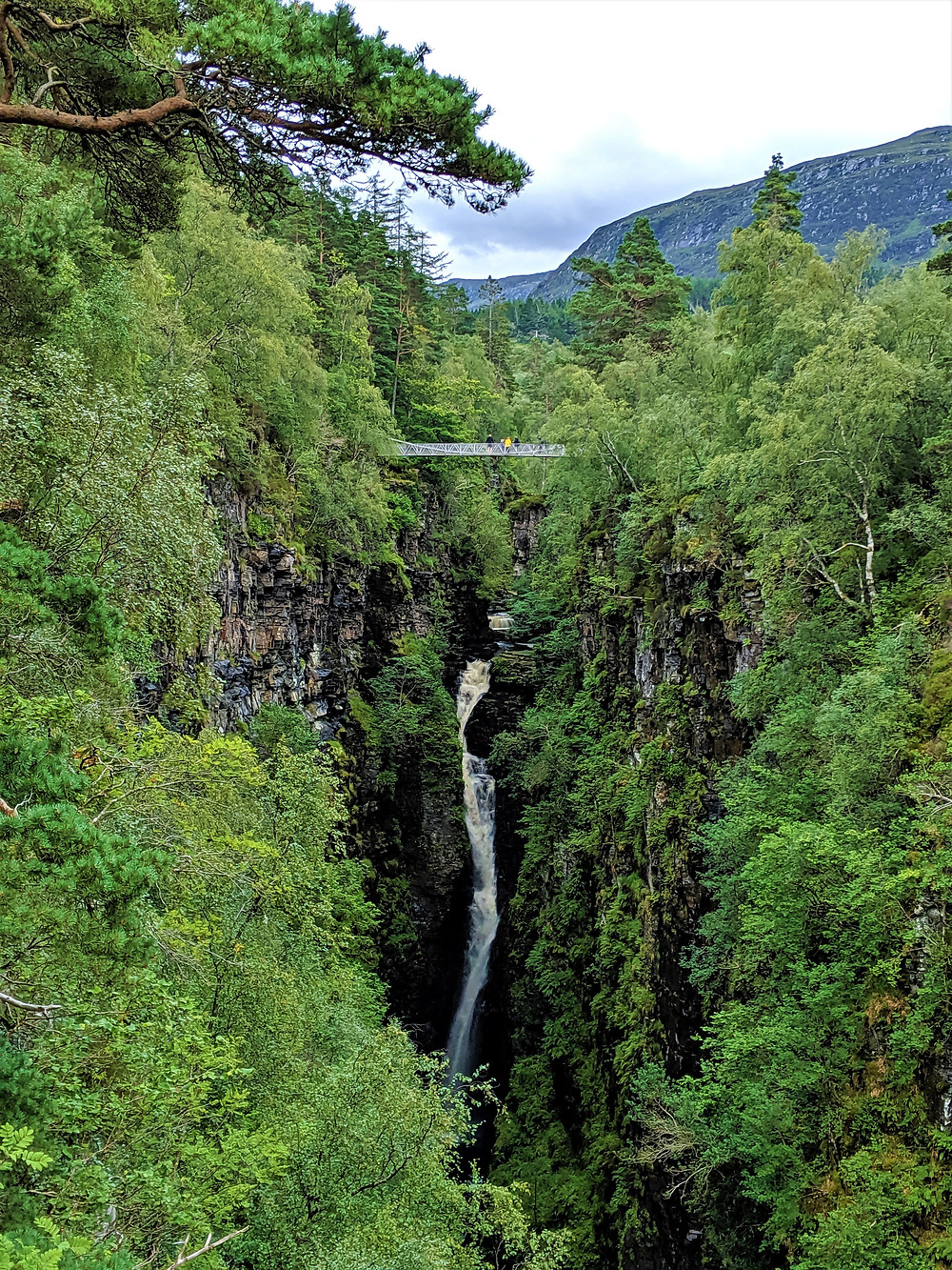 Corrieshalloch Gorge National Nature Reserve, Ullapool