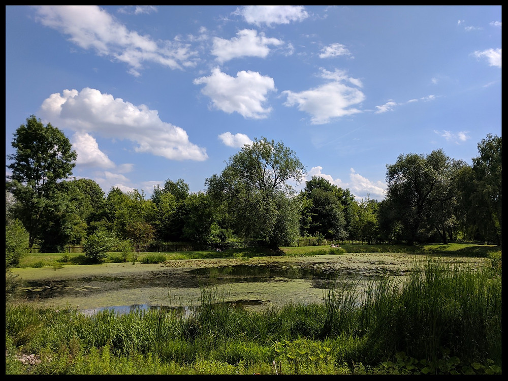 Lublin Botanical Gardens, Poland