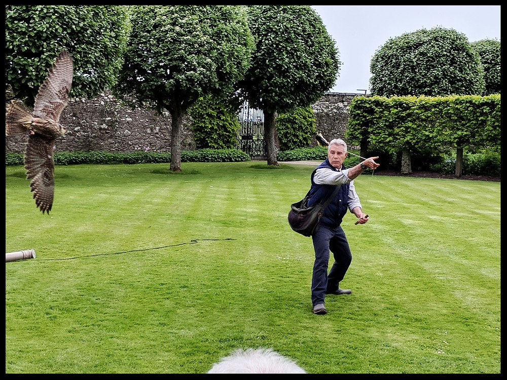 Dunrobin Castle and Gardens - Falconry Show with Andrew Bunting