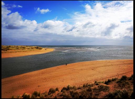 The Buchan Coast