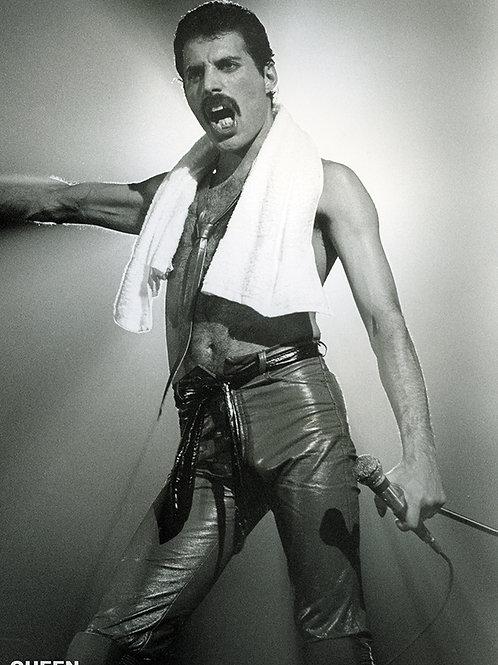Freddie Mercury (poster)