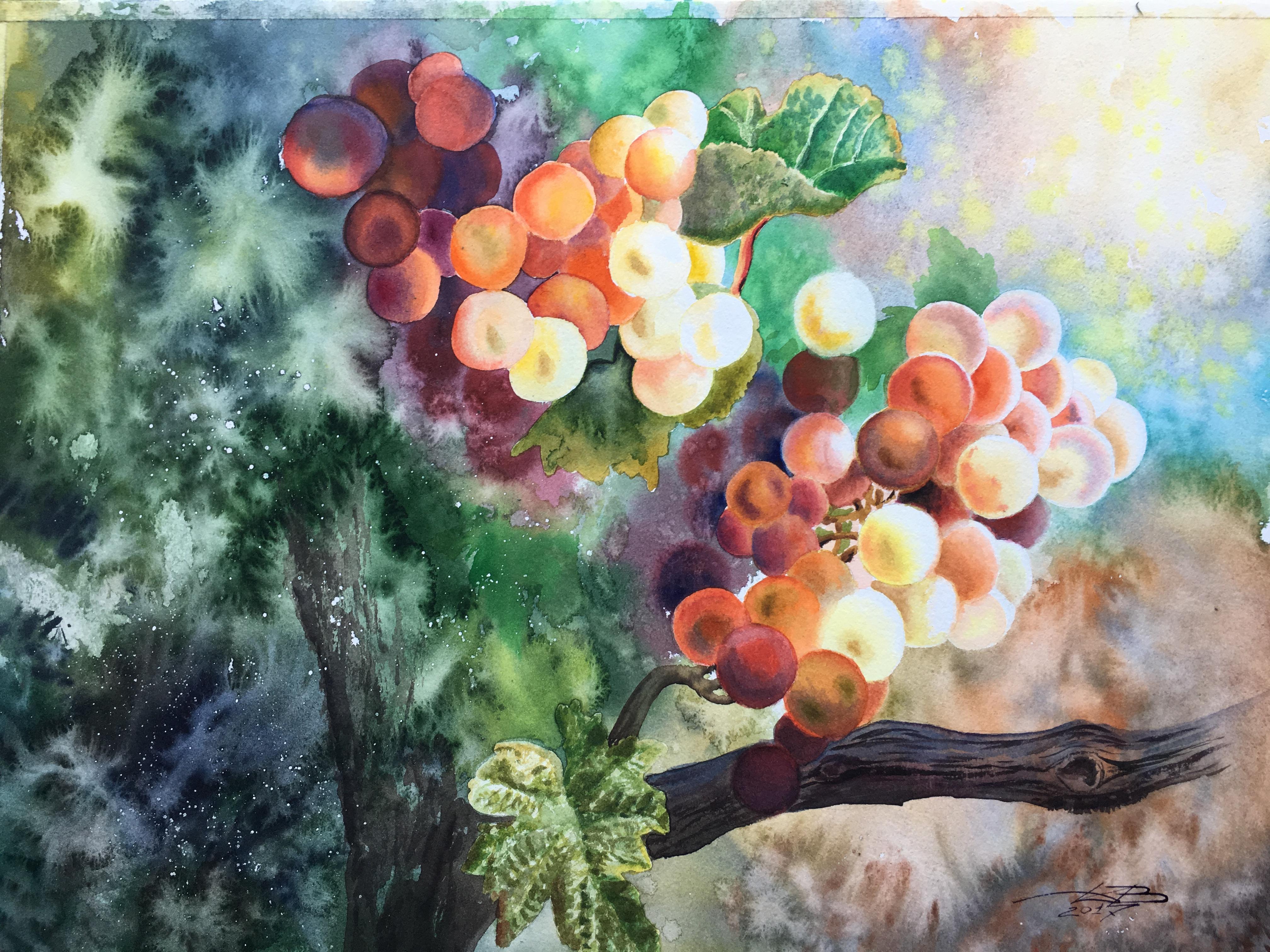 Солнечные плоды